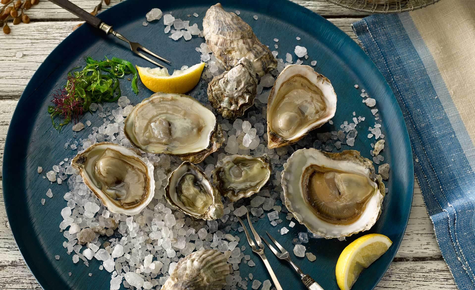 Slider image Oysters